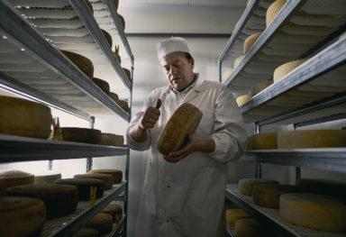 Ca' Donadel: Servizio fotografico di reportage azienda agricola Treviso