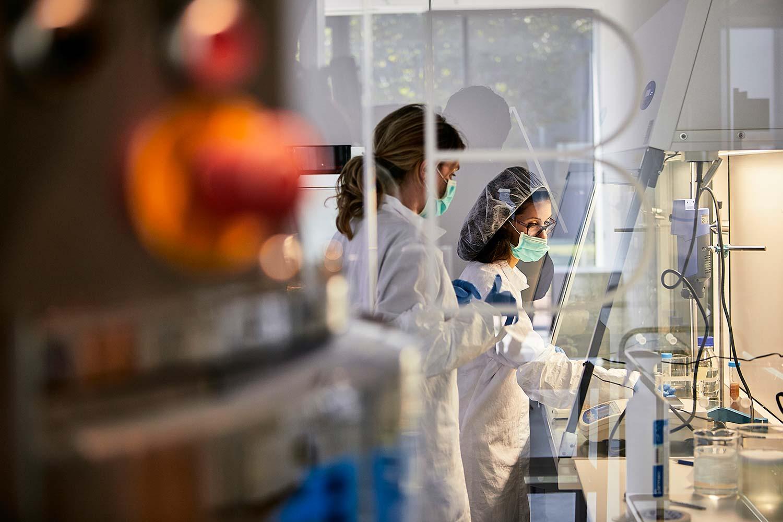 Reportage fotografico ambiente biomedico e biologico fitoterapico agrario industriale da fotografo aziendale e commerciale