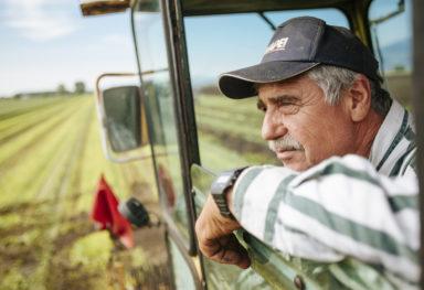 Findus: Fotografo reportage aziendale corporate agricoltura