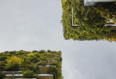 Bosco Verticale: Fotografo di architettura a Milano